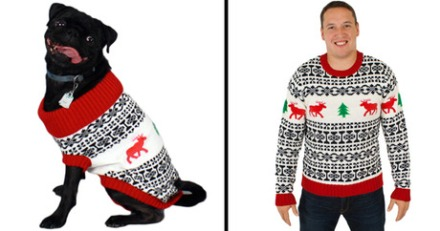 file_20930_column_should_my_dog_wear_a_sweater.jpg