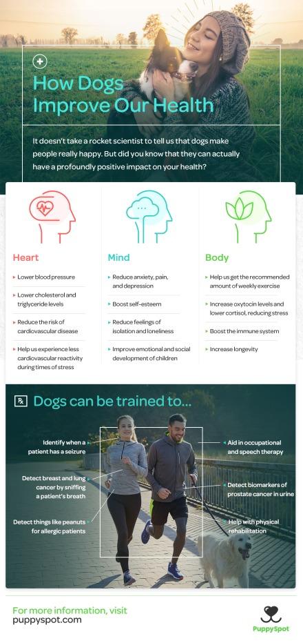 puppyspot_dogs_health_x2_v02.jpg